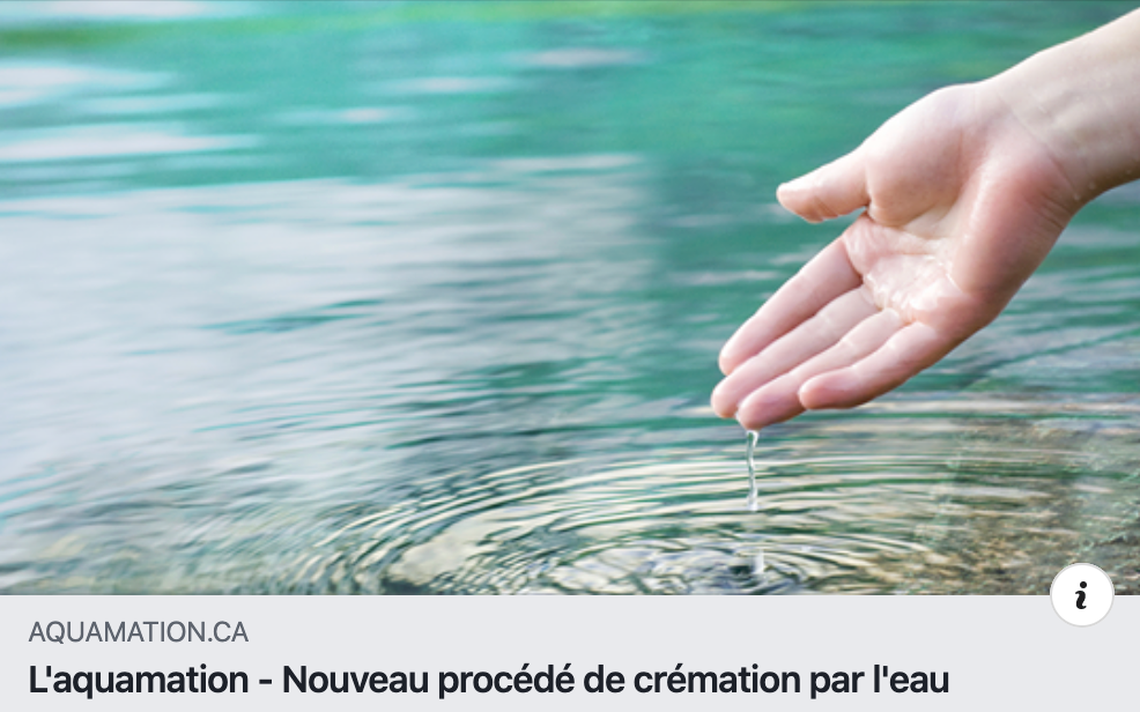 PATARD  CATON Amilly Hopital - ✅ Aquamation ?