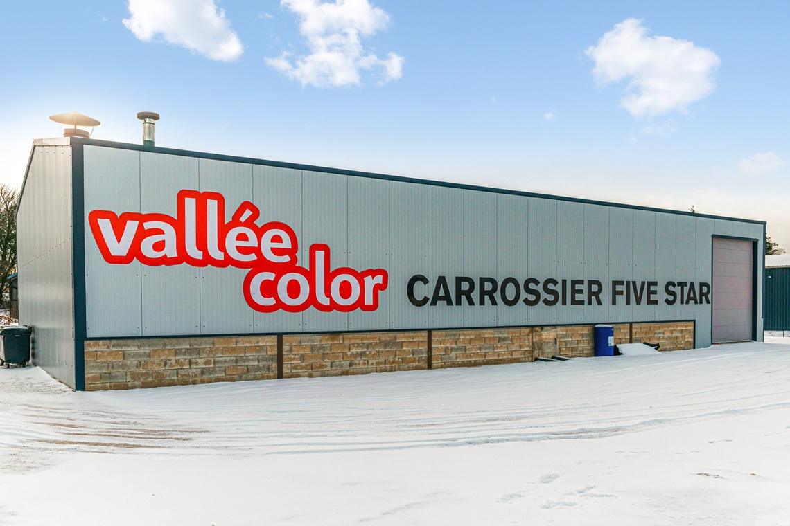 VALLEE COLOR
