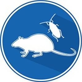 SOA - EVRON - Destruction rats, souris, insectes